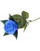 Ночник Роза синяя   35см  745427