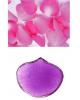Молд пластик универсальный Микс 1403541