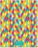 Дневник 1-4 кл.48л. Лайт 'Яркие краски' глянцевая ламинация,  Дм48лт_13504 Спейс