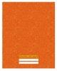 Дневник 1-11 кл. 48л 'Оранжевый' (универсальный) ДИН 174806
