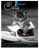 Дневник 1-11 кл. 'Серый котенок' С 4072-08
