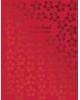 Дневник 1-11 кл. 'Красные цветы' тв. переплет 48л. тисн. фольгой