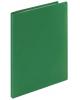 Папка 10 файлов зеленая STAFF 225691