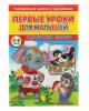 Развивающая книжка с наклейками. Первые уроки для малышей 'Развиваем память 5-6 лет' 1505924